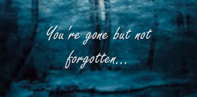 "A Powerful Song to Remember Your Loved Ones - ""I'll see you again"""